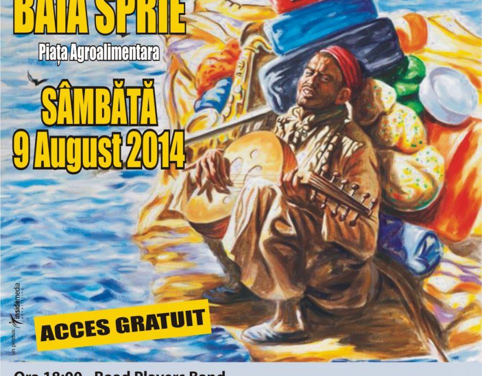 flyer A6 festival 2014